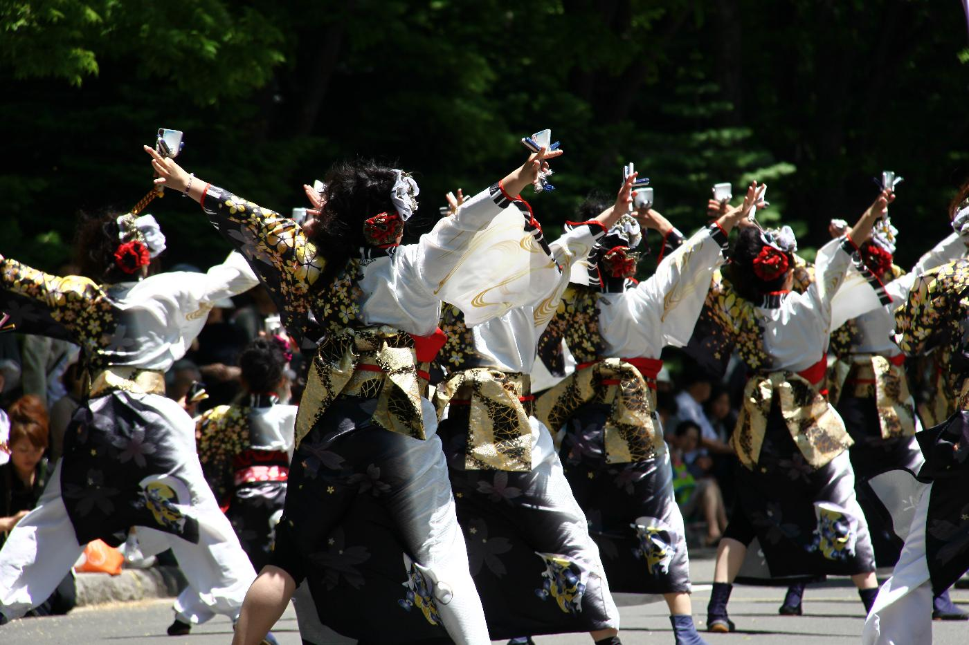 Yosakoi20130005