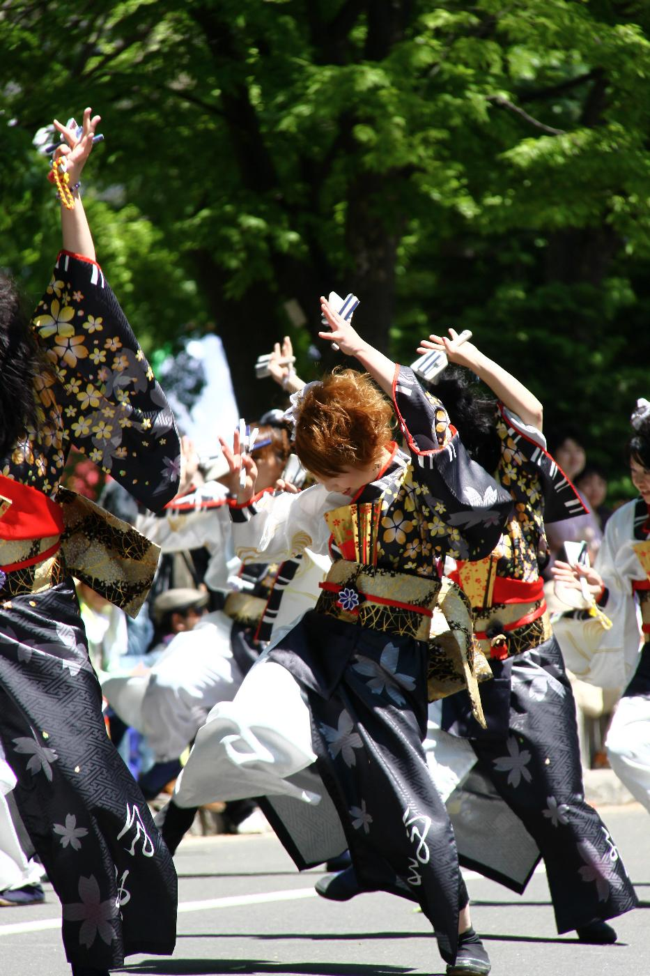 Yosakoi20130006