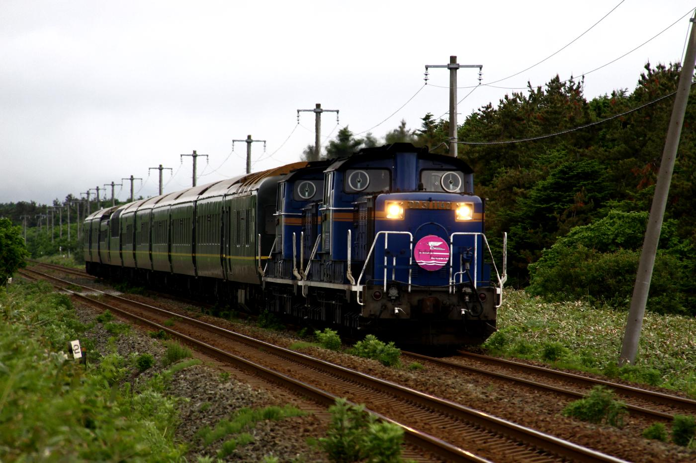 Jr1306222006