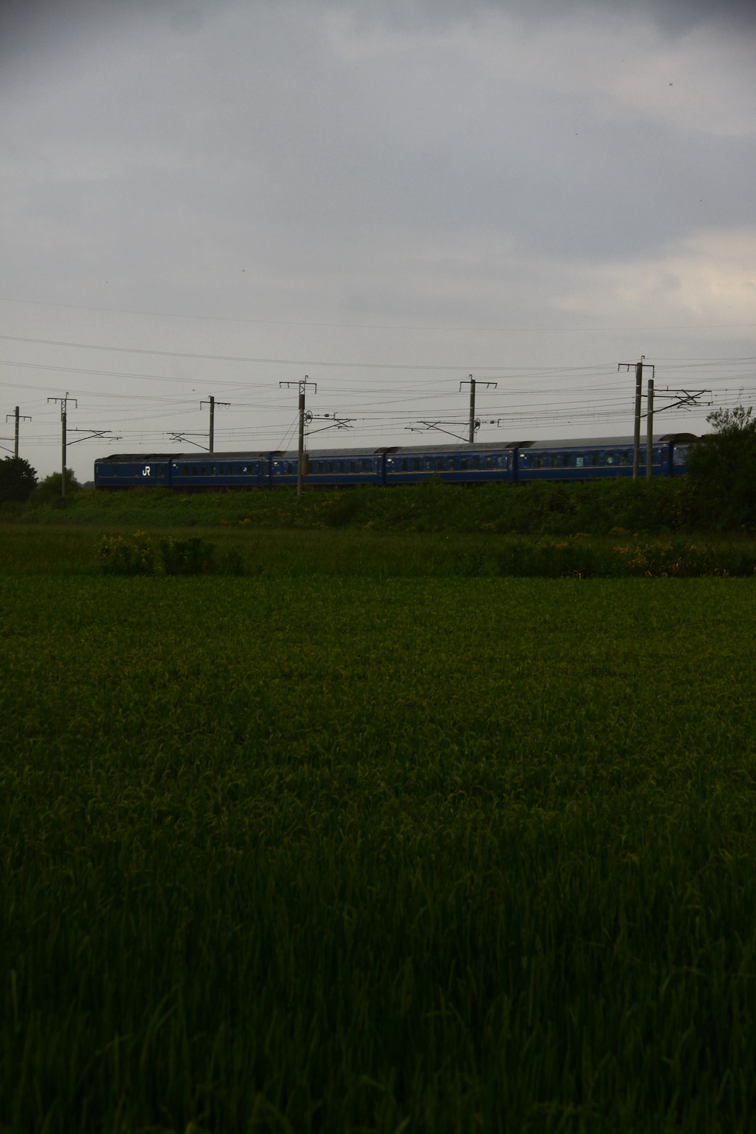 Jr1508221007