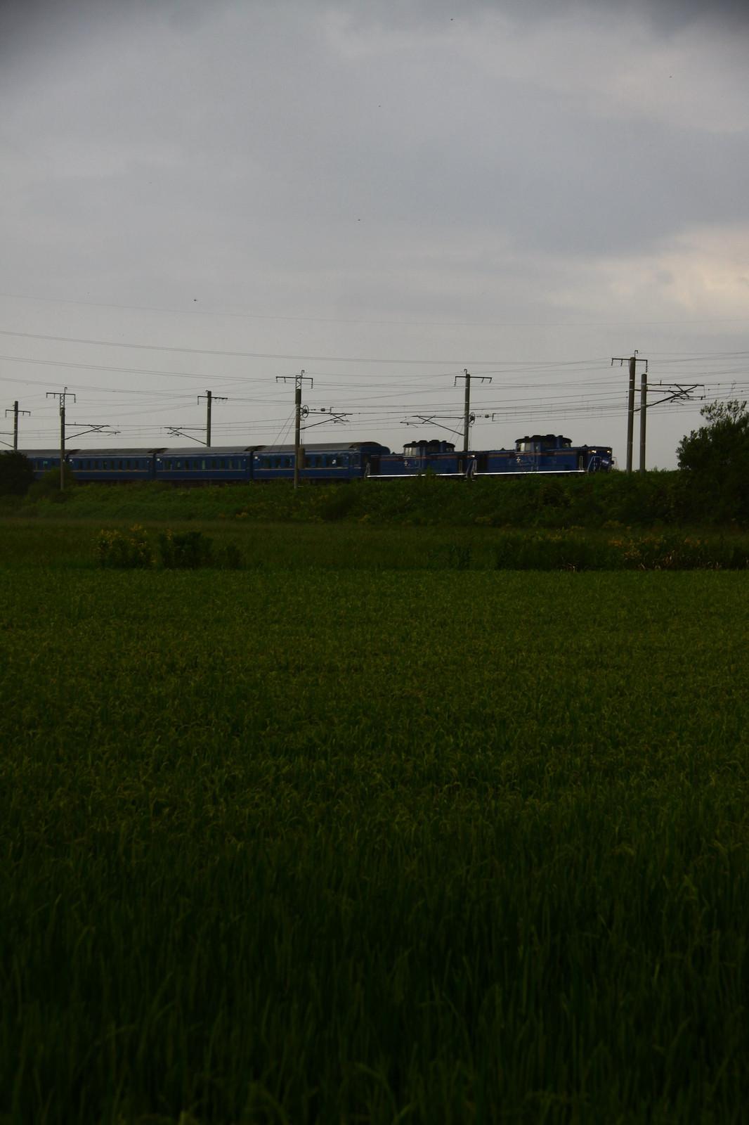 Jr1508221006